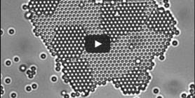 Diffusion and Colloidal Crystals